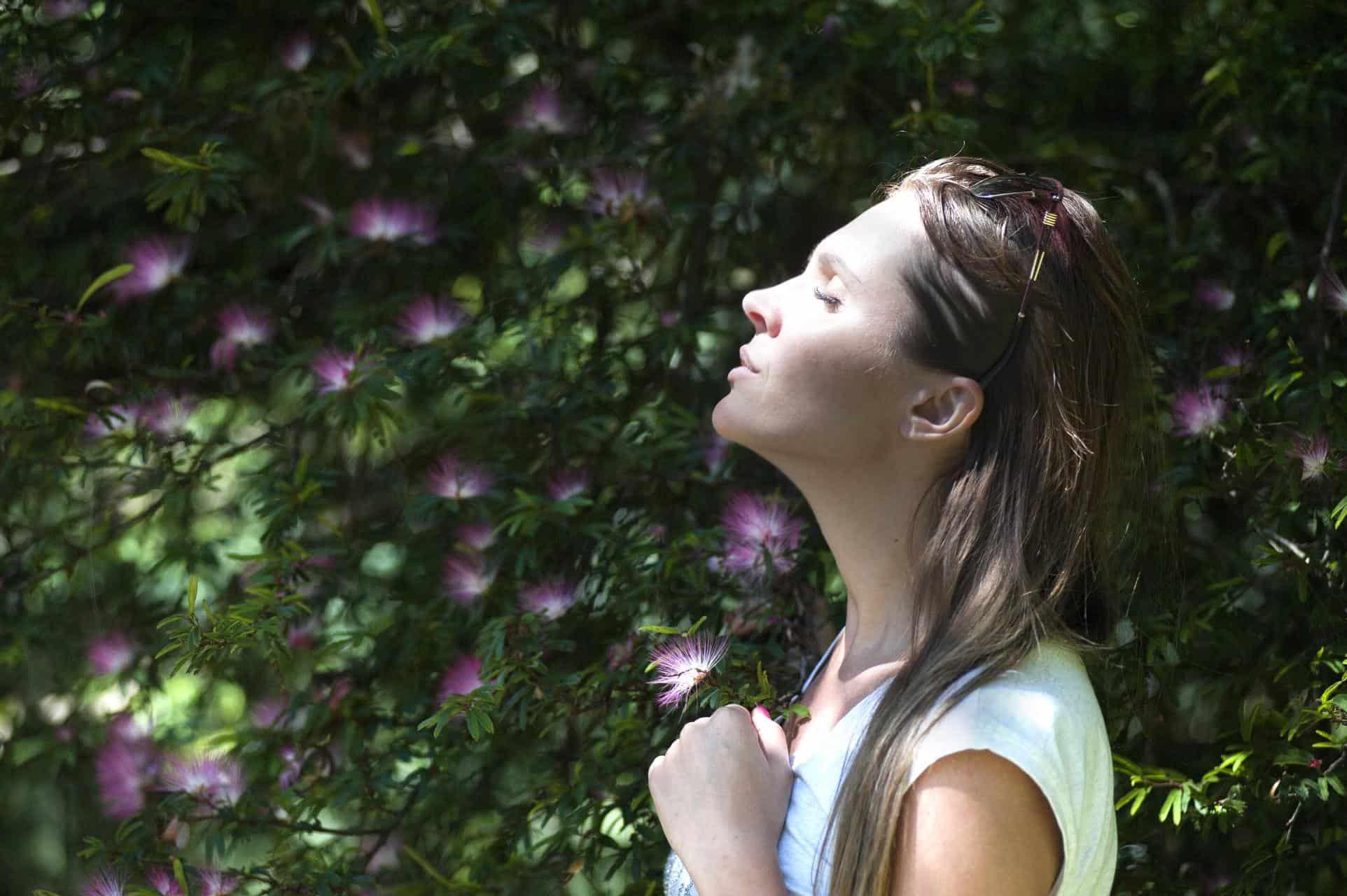 mindfulness-significato